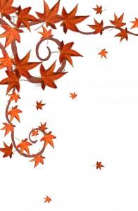 Herbst braune Blätter