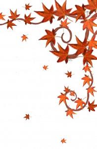 Herbst braune Blätter2